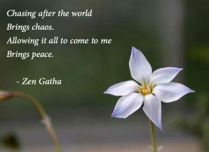 zen-chasing-world