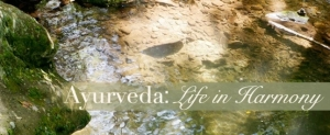 banner_Ayurveda-Spa-wellness-retreat