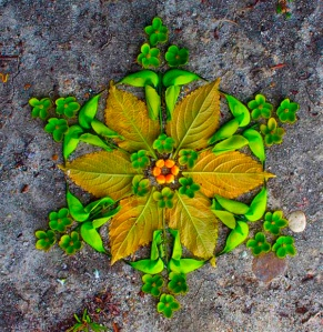 Flower-Mandalas-by-Kathy-Klein