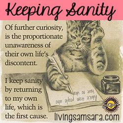 kitty-keeping-sanity