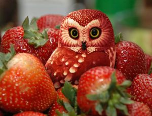 Strawberry-Owl