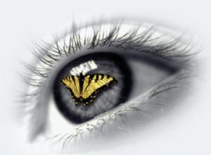 butterfly_eye1